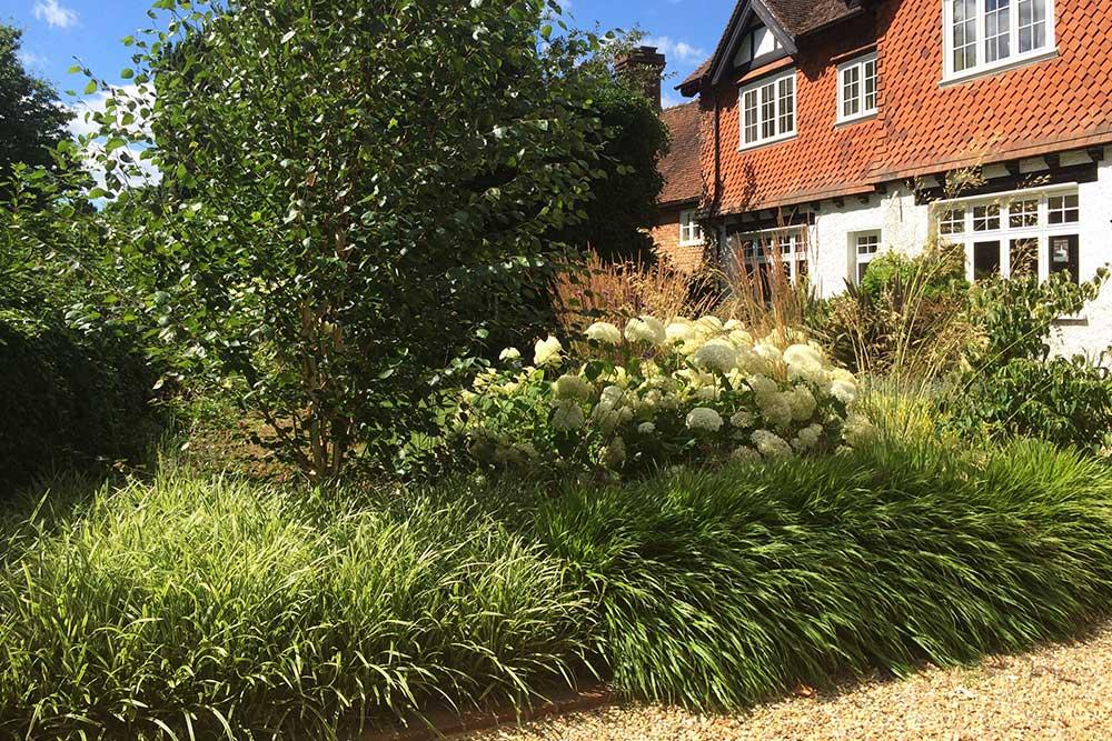 https://greenardendesign.com/wp-content/uploads/2018/09/front-garden-brockham-landscape.jpg