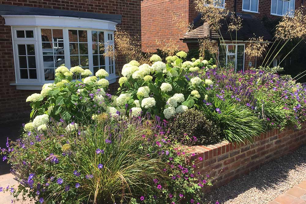 Front-garden-Ashtead-1
