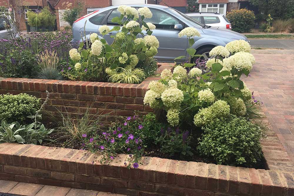 Front-garden-Ashtead-4