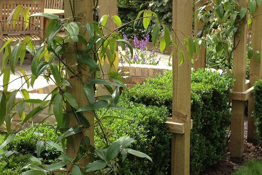 https://greenardendesign.com/wp-content/uploads/2019/09/Front-garden-surbiton-3.jpg