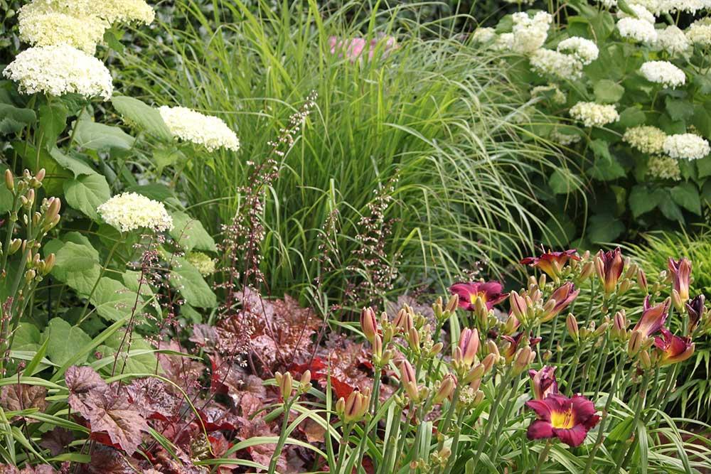 https://greenardendesign.com/wp-content/uploads/2019/09/Large-Garden-Kingston-6.jpg