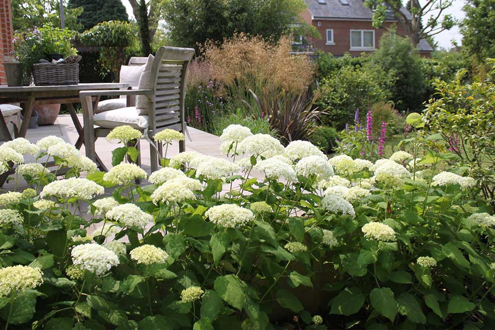 https://greenardendesign.com/wp-content/uploads/2019/09/Large-Garden-Kingston-8.jpg