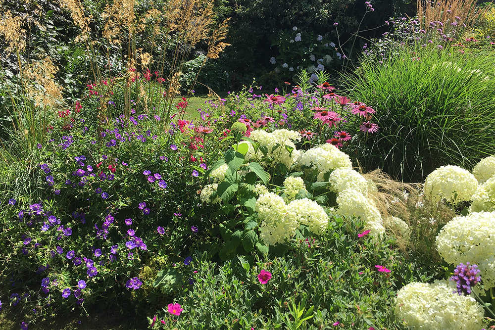 https://greenardendesign.com/wp-content/uploads/2019/09/Planting-Ashford-5.jpg