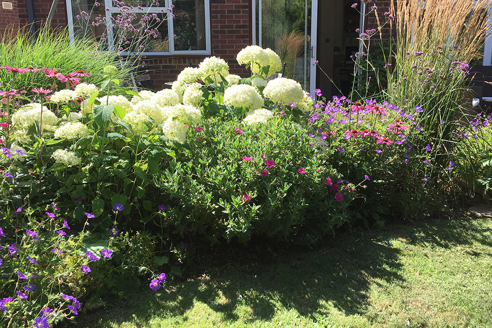 https://greenardendesign.com/wp-content/uploads/2019/09/Planting-Ashford-6.jpg