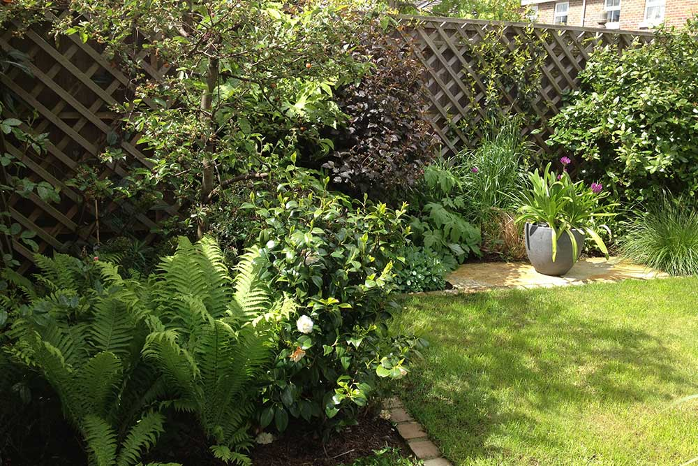 https://greenardendesign.com/wp-content/uploads/2019/09/Small-garden-Worcester-Park-2.jpg
