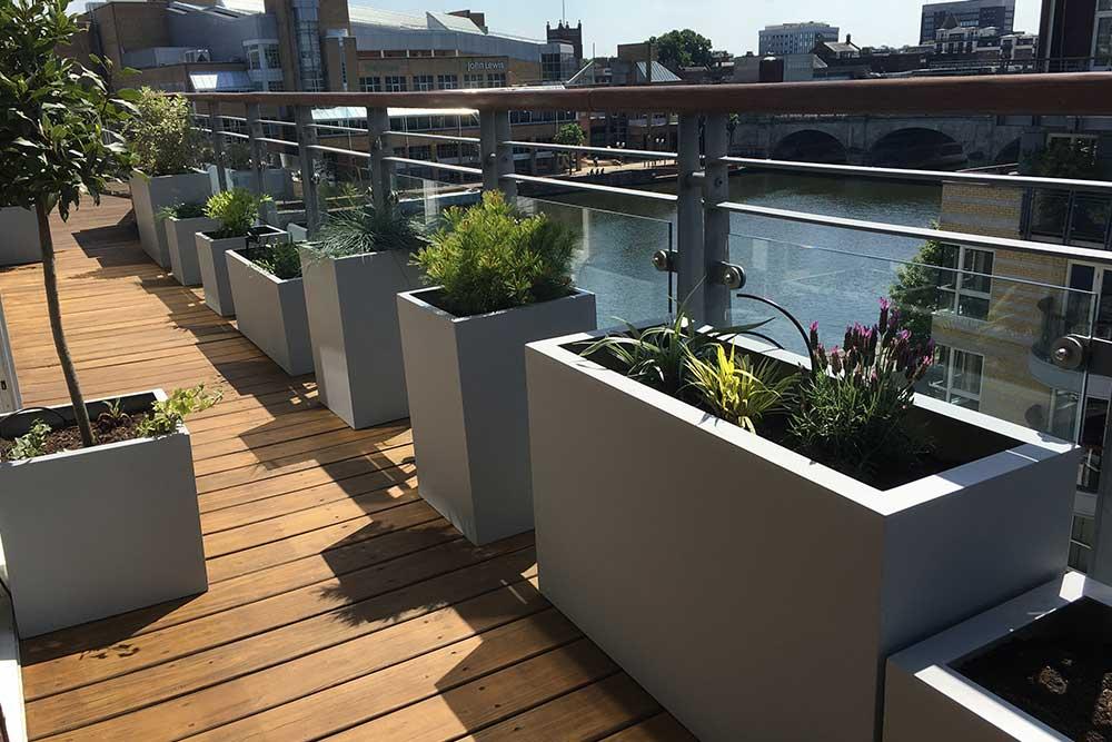 https://greenardendesign.com/wp-content/uploads/2019/09/balcony-garden-kingston-1.jpg
