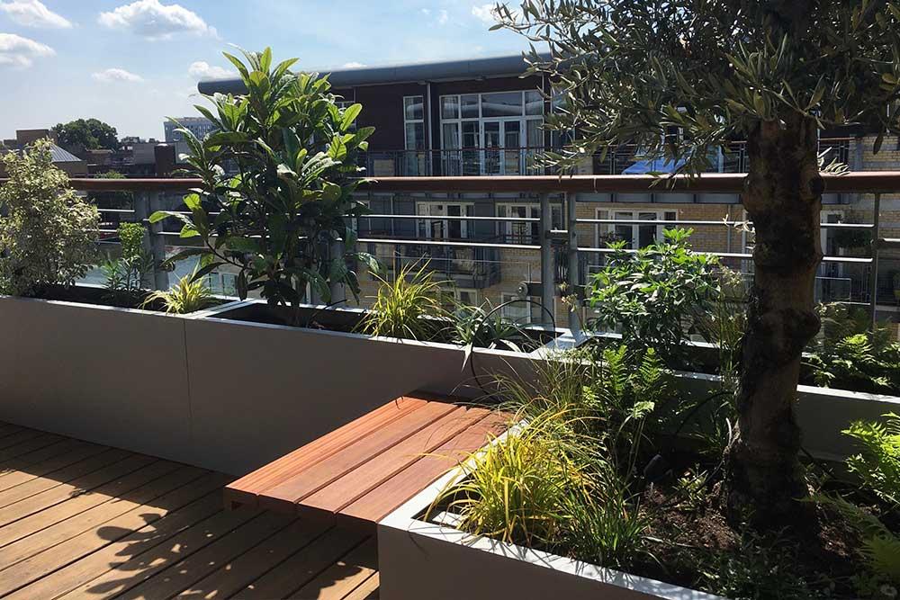 https://greenardendesign.com/wp-content/uploads/2019/09/balcony-garden-kingston-2.jpg