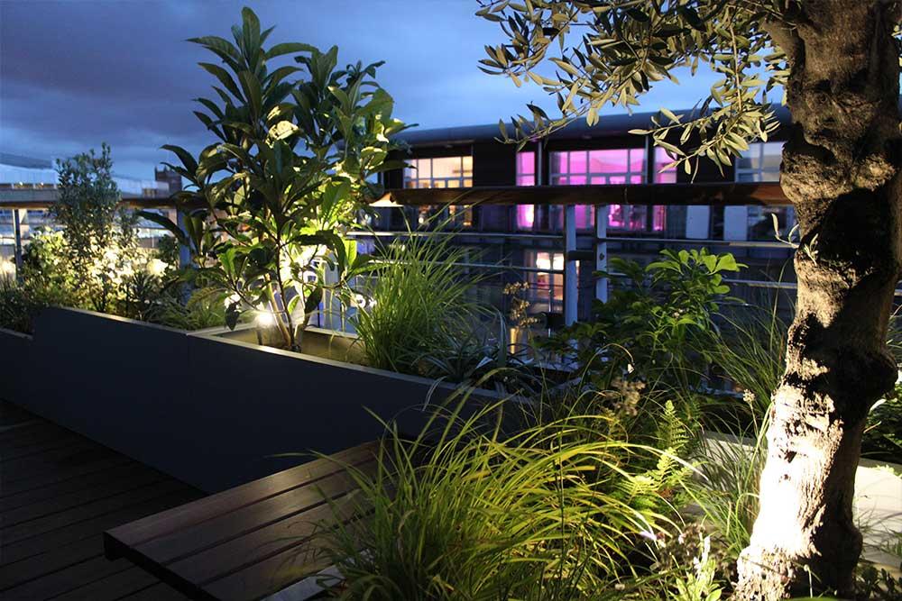 https://greenardendesign.com/wp-content/uploads/2019/09/balcony-garden-kingston-4.jpg