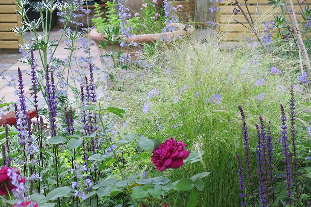 https://greenardendesign.com/wp-content/uploads/2019/09/modern-garden-walton-4.jpg