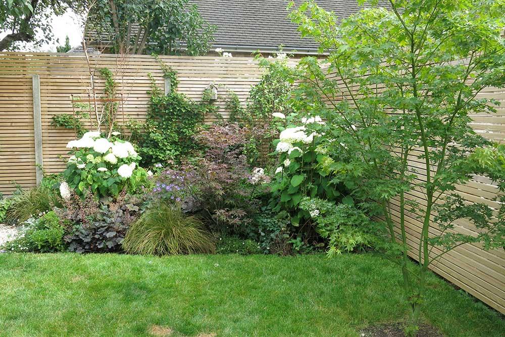https://greenardendesign.com/wp-content/uploads/2019/09/modern-garden-walton-9.jpg