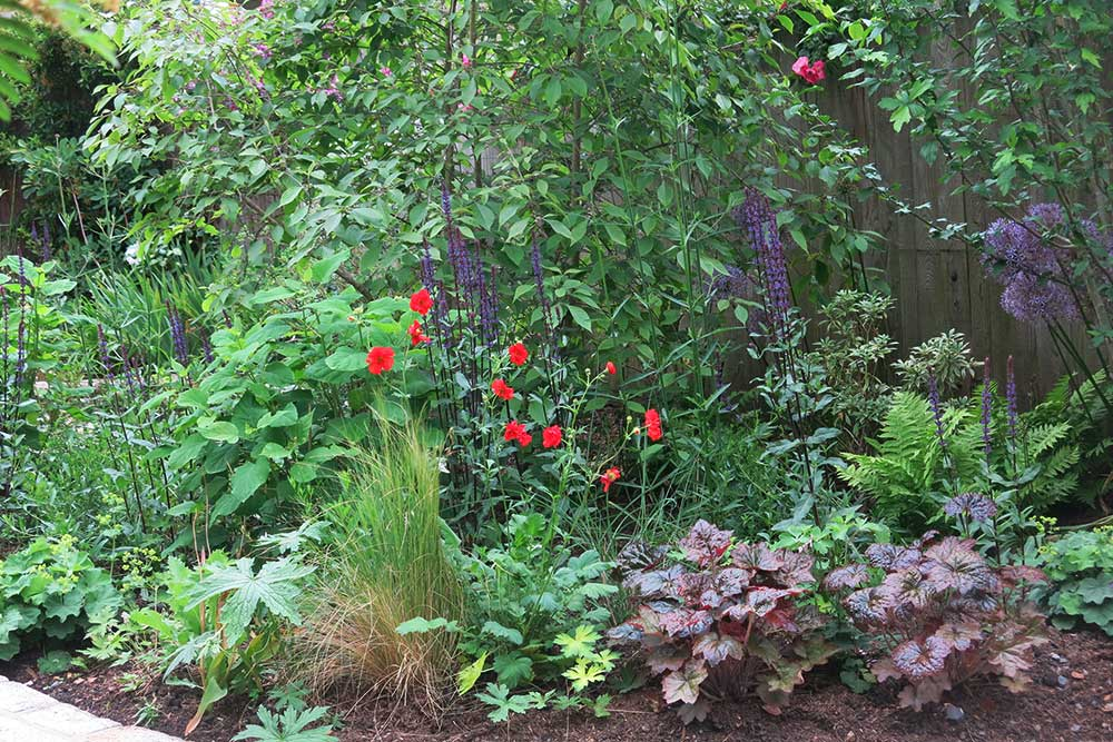 planting-design-teddington-2