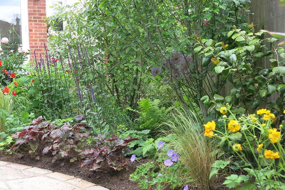 planting-design-teddington-3