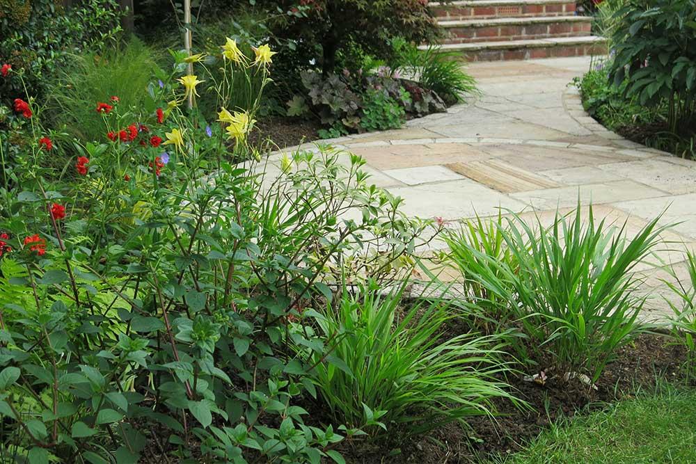 planting-design-teddington-6