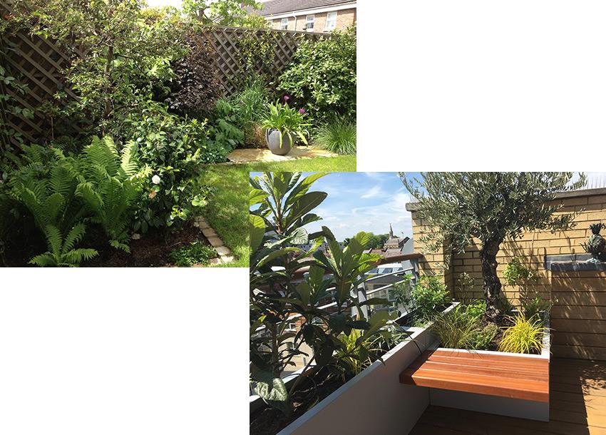 your garden is a safe space - surrey garden design
