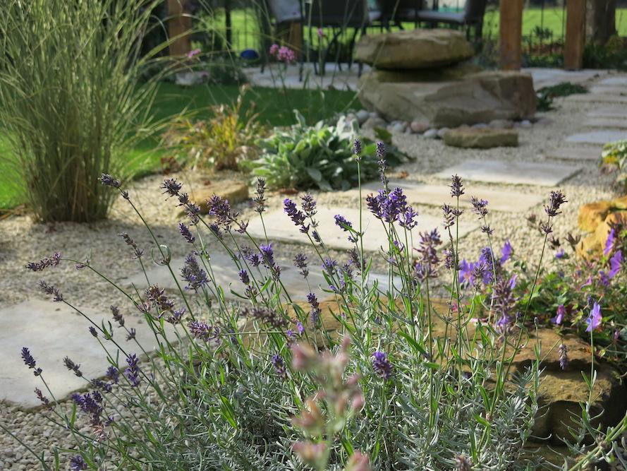 A garden with a view 11, Sunbury