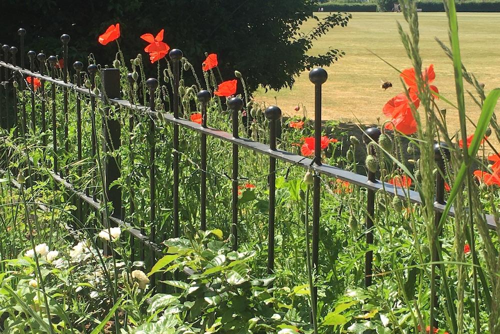 A garden with a view 7, Sunbury