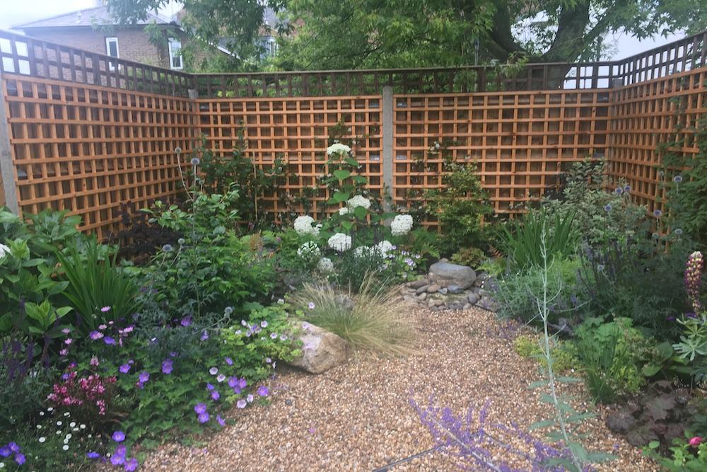 Planting Design Twickenham 1