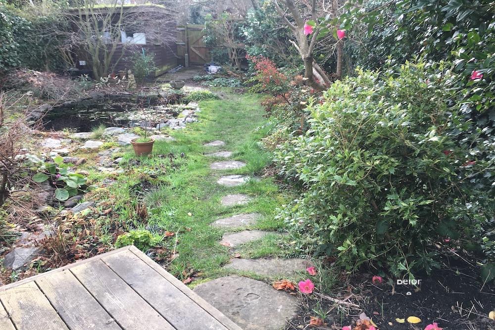 A garden rejuvenation 12, Thames Ditton