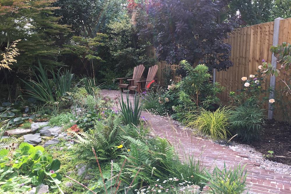A garden rejuvenation 4, Thames Ditton