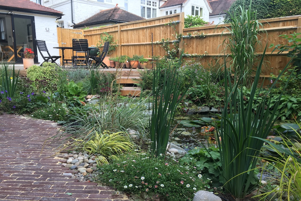 A garden rejuvenation 6, Thames Ditton