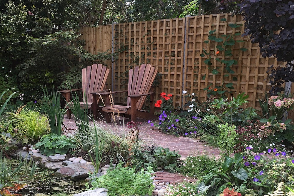A garden rejuvenation 9, Thames Ditton