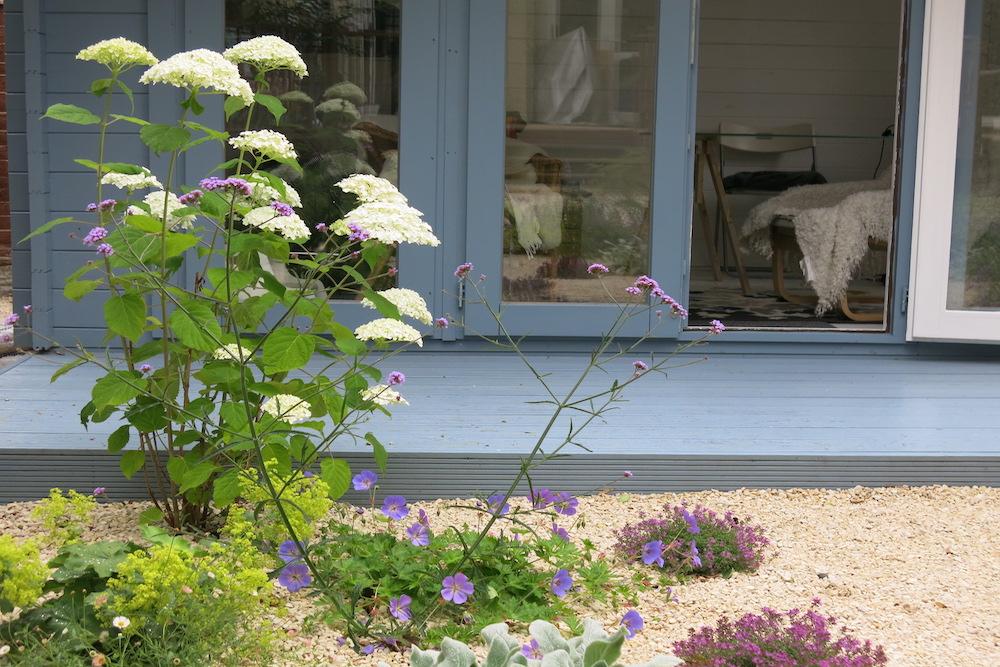 A small gravel garden 3, Carshalton