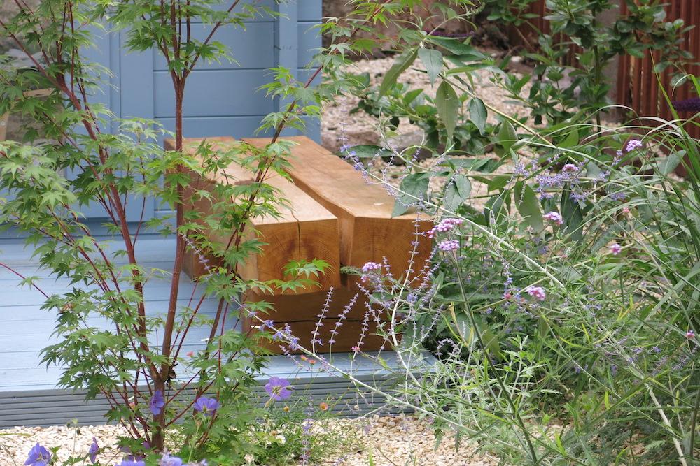 A small gravel garden 7, Carshalton