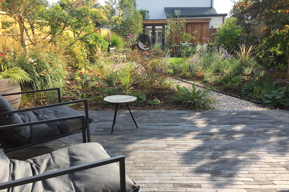 Plant lover's garden, East Molesey 1