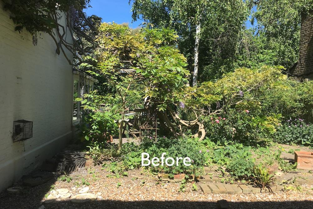 Planting Design, Teddington 9